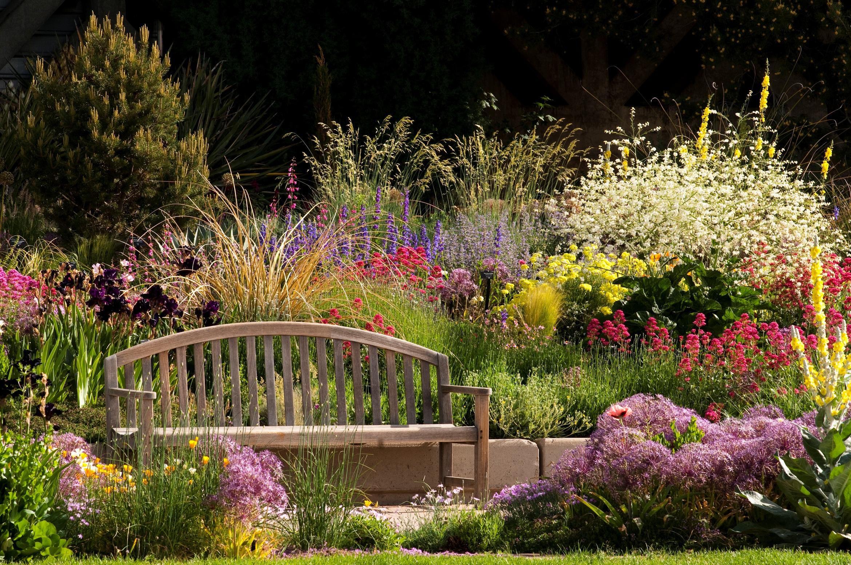 Roads Watersmart Garden