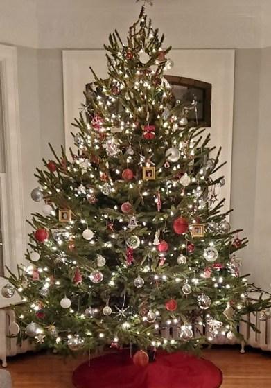 christmas-tree-e1576380559953.jpg